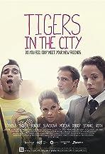 Tigre v meste