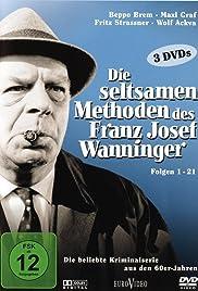 Die seltsamen Methoden des Franz Josef Wanninger Poster