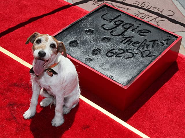 Uggie at The Artist (2011)