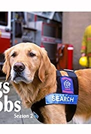 Yukon: Search and Rescue Dog Poster