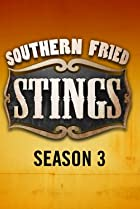Image of Southern Fried Stings