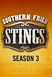 Southern Fried Stings Poster