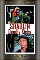 Image of Shaolin Deadly Kicks