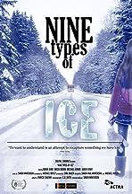 Nine Types of Ice