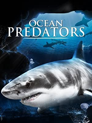 Ocean Predators (2013) Download on Vidmate