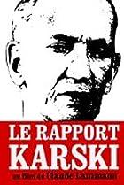 Image of Le rapport Karski