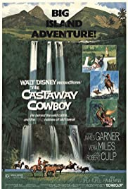 The Castaway Cowboy (1974) Poster - Movie Forum, Cast, Reviews