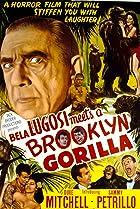 Image of Bela Lugosi Meets a Brooklyn Gorilla