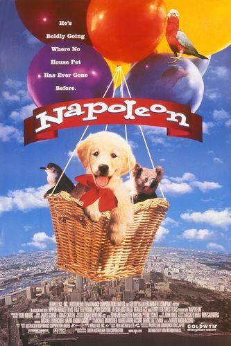 Napoleon (1995)