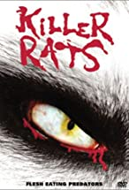 Primary image for Rats