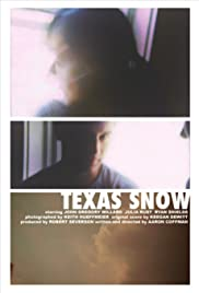 Texas Snow Poster
