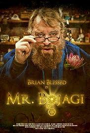 Mr. Bojagi Poster