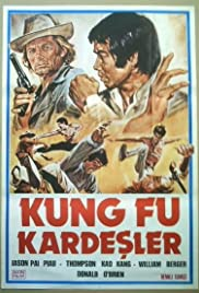 Kung Fu Brothers in the Wild West Poster