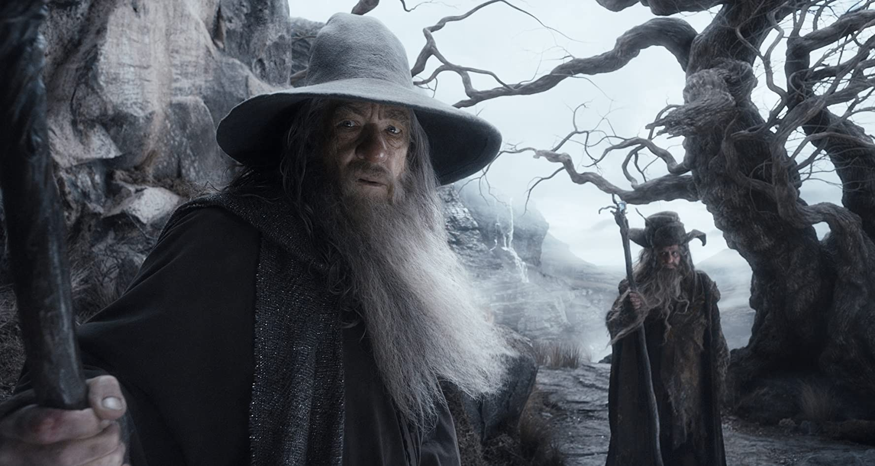 Ian McKellen and Sylvester McCoy in The Hobbit: The Desolation of Smaug (2013)