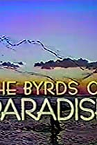 Image of The Byrds of Paradise