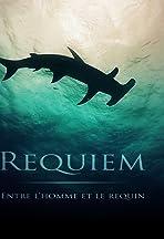 Requiem: entre l'homme et le requin