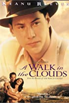 Image of A Walk in the Clouds
