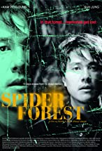 Primary image for Spider Forest