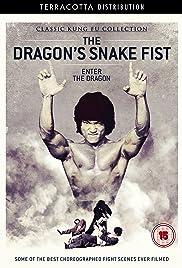 Dragon's Snakefist Poster