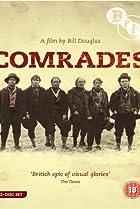 Image of Comrades