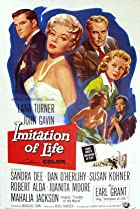 Image of Imitation of Life