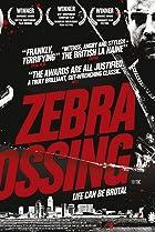 Image of Zebra Crossing