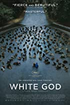 Image of White God