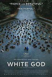 Fehér isten(2014) Poster - Movie Forum, Cast, Reviews