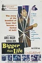 Image of Bigger Than Life