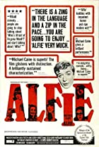 Image of Alfie