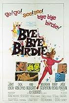 Image of Bye Bye Birdie