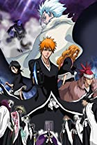 Image of Bleach the Movie 2: The Diamond Dust Rebellion