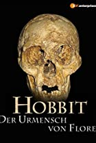Image of The Hobbit Enigma