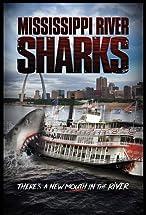 Primary image for Mississippi River Sharks