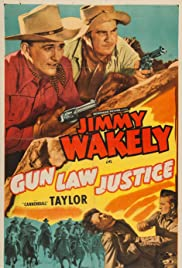 Gun Law Justice Poster