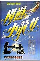 Image of Yang guo yu xiao long nu