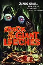 Image of Attack of the Giant Leeches