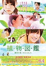 Evergreen Love (2016)