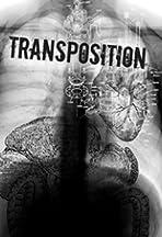 Transposition