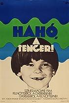 Image of Hahó, a tenger!