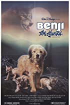 Image of Benji the Hunted