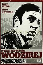 Image of Wodzirej