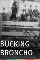 Image of Bucking Broncho