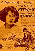 Rose o' the Sea