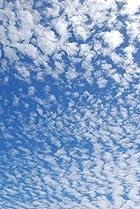 Image of Ten Skies