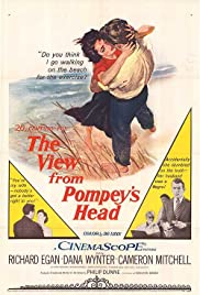 The View from Pompey's Head Poster