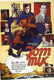 The Lone Star Ranger Poster