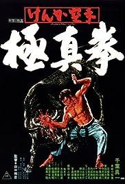 Karate Bullfighter Poster