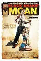 Image of Black Snake Moan