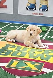 Puppy Bowl IX Poster